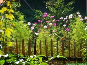 Bauerngarten Zaun
